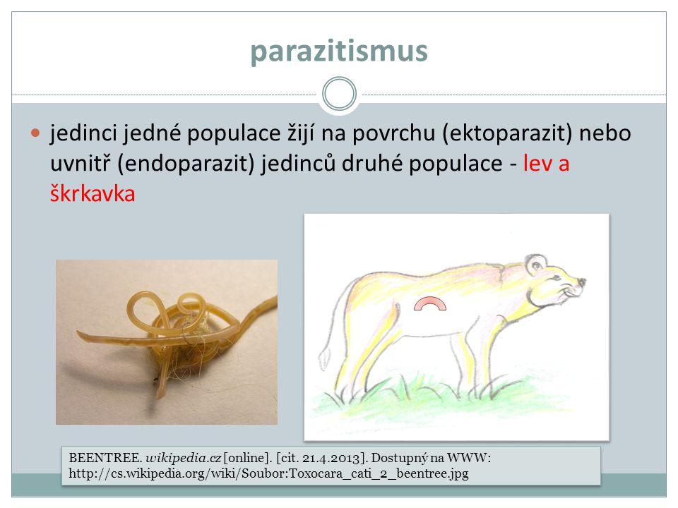 parazitismus jedinci jedné populace žijí na povrchu (ektoparazit) nebo uvnitř (endoparazit) jedinců druhé populace - lev a škrkavka BEENTREE. wikipedi