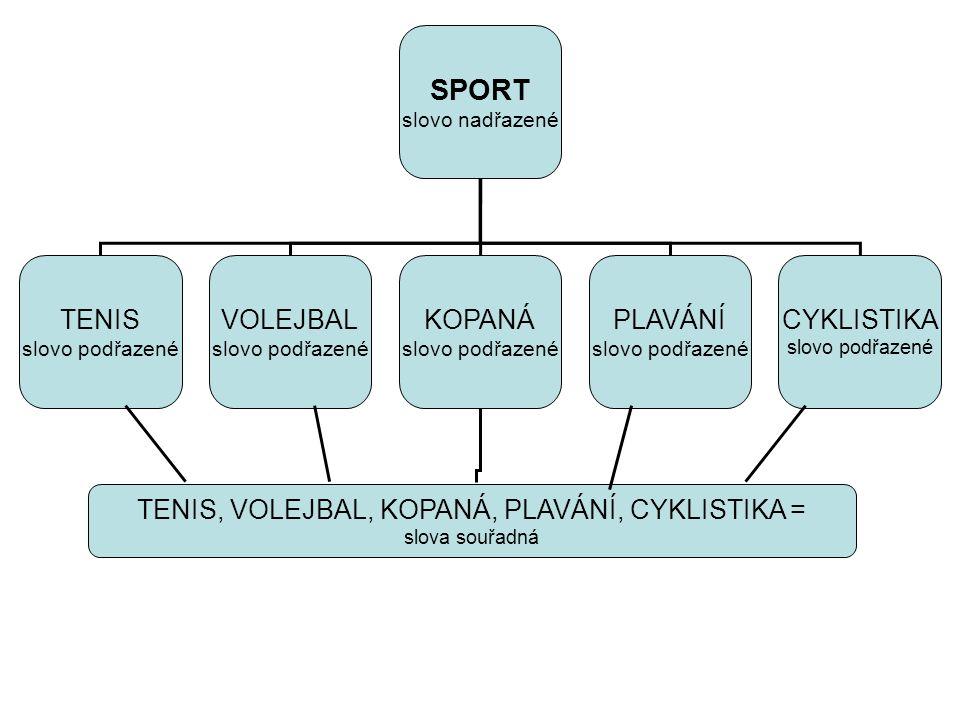 SPORT slovo nadřazené TENIS slovo podřazené KOPANÁ slovo podřazené PLAVÁNÍ slovo podřazené TENIS, VOLEJBAL, KOPANÁ, PLAVÁNÍ, CYKLISTIKA = slova souřad