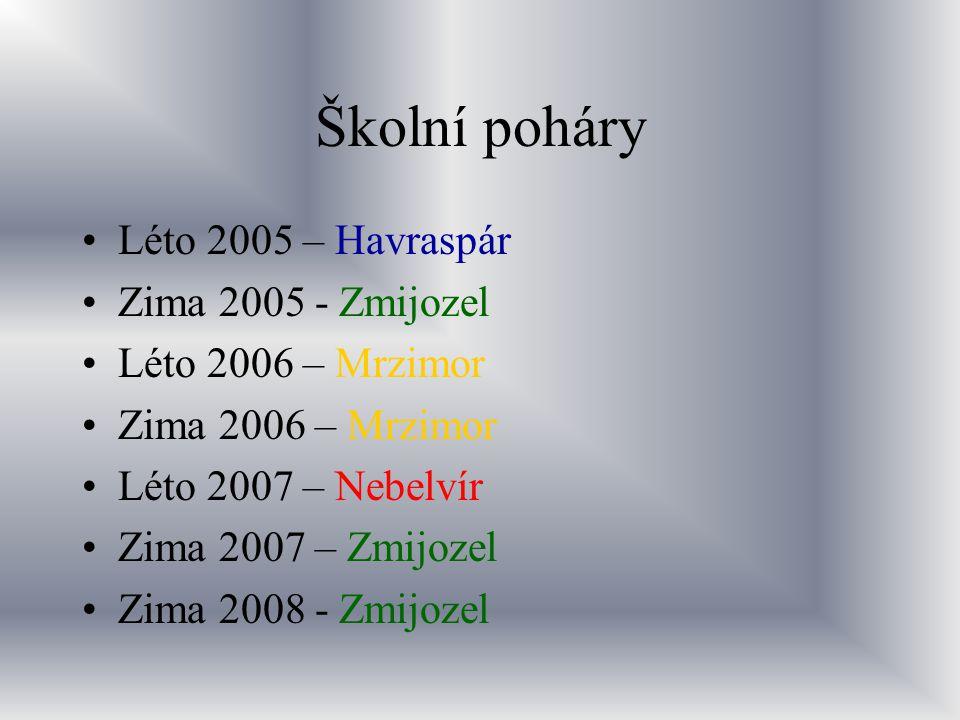 Školní poháry Léto 2005 – Havraspár Zima 2005 - Zmijozel Léto 2006 – Mrzimor Zima 2006 – Mrzimor Léto 2007 – Nebelvír Zima 2007 – Zmijozel Zima 2008 -