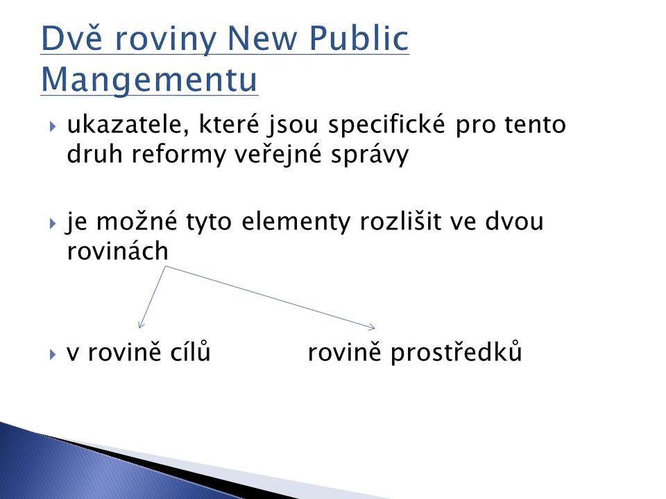  ukazatele, které jsou specifické pro tento druh reformy veřejné správy  je možné tyto elementy rozlišit ve dvou rovinách  v rovině cílů rovině pro