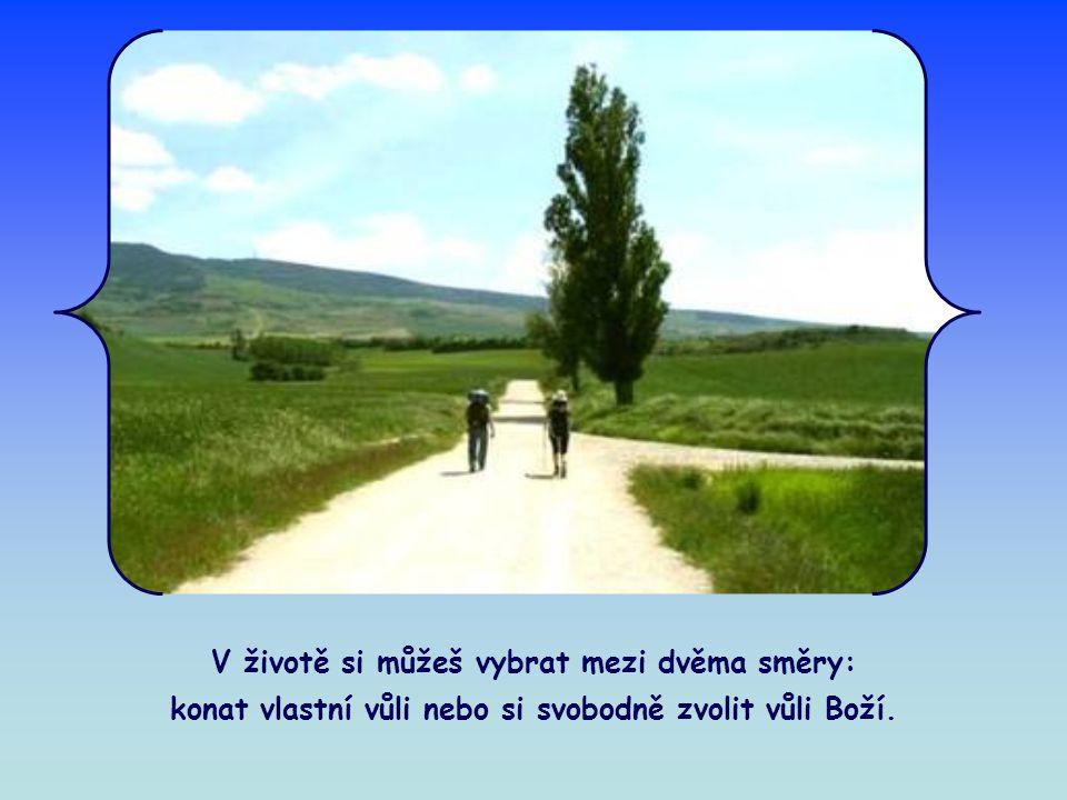 V životě si můžeš vybrat mezi dvěma směry: konat vlastní vůli nebo si svobodně zvolit vůli Boží.