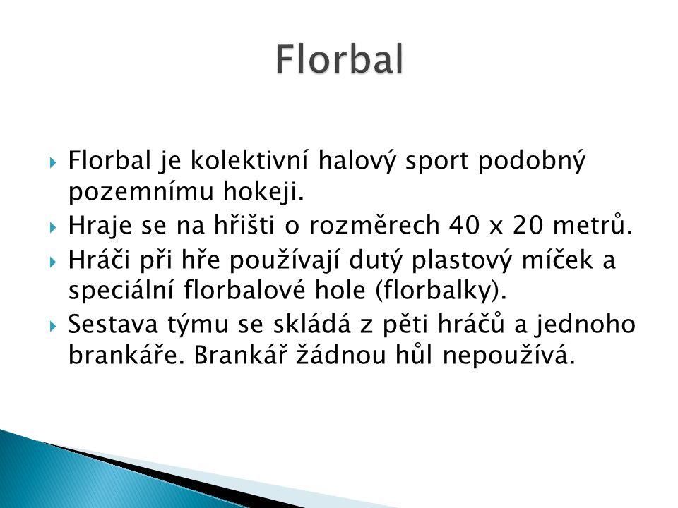  Florbal je kolektivní halový sport podobný pozemnímu hokeji.  Hraje se na hřišti o rozměrech 40 x 20 metrů.  Hráči při hře používají dutý plastový