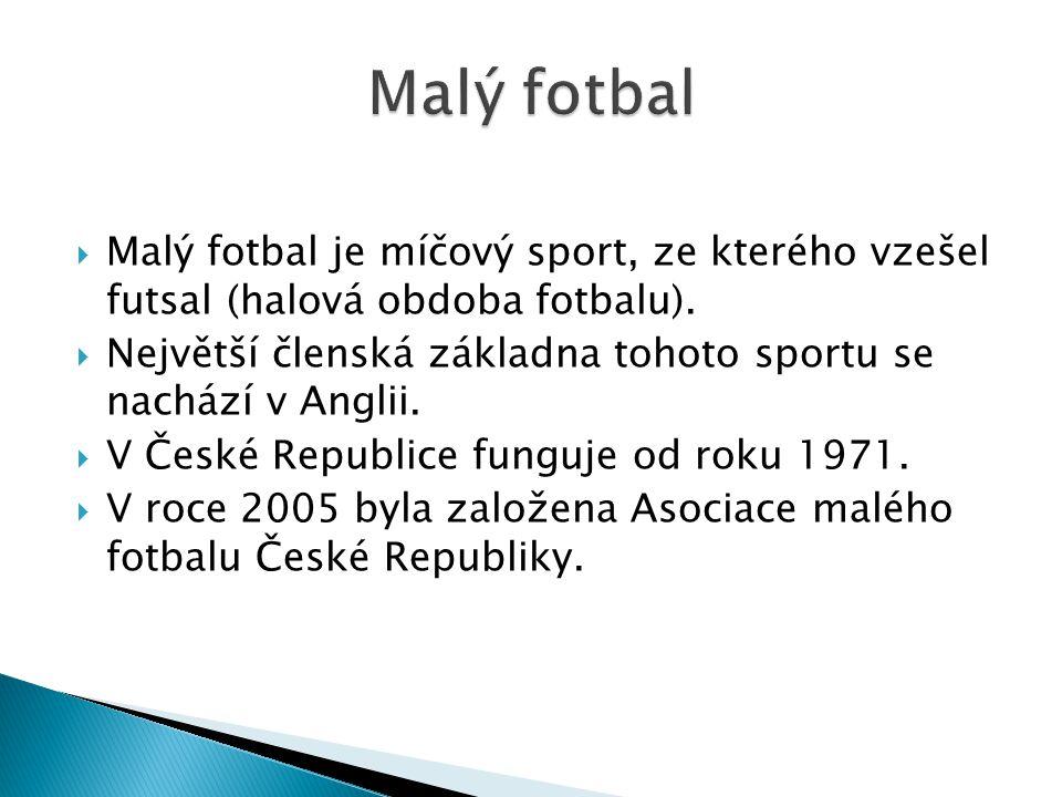  Malý fotbal je míčový sport, ze kterého vzešel futsal (halová obdoba fotbalu).  Největší členská základna tohoto sportu se nachází v Anglii.  V Če