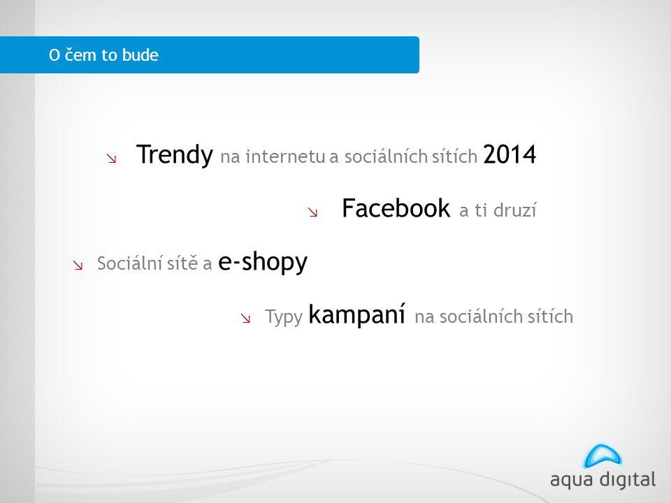 ↘ l Trendy na internetu a sociálních sítích 2014 ↘ L Facebook a ti druzí ↘ Sociální sítě a e-shopy ↘ Typy kampaní na sociálních sítích O čem to bude