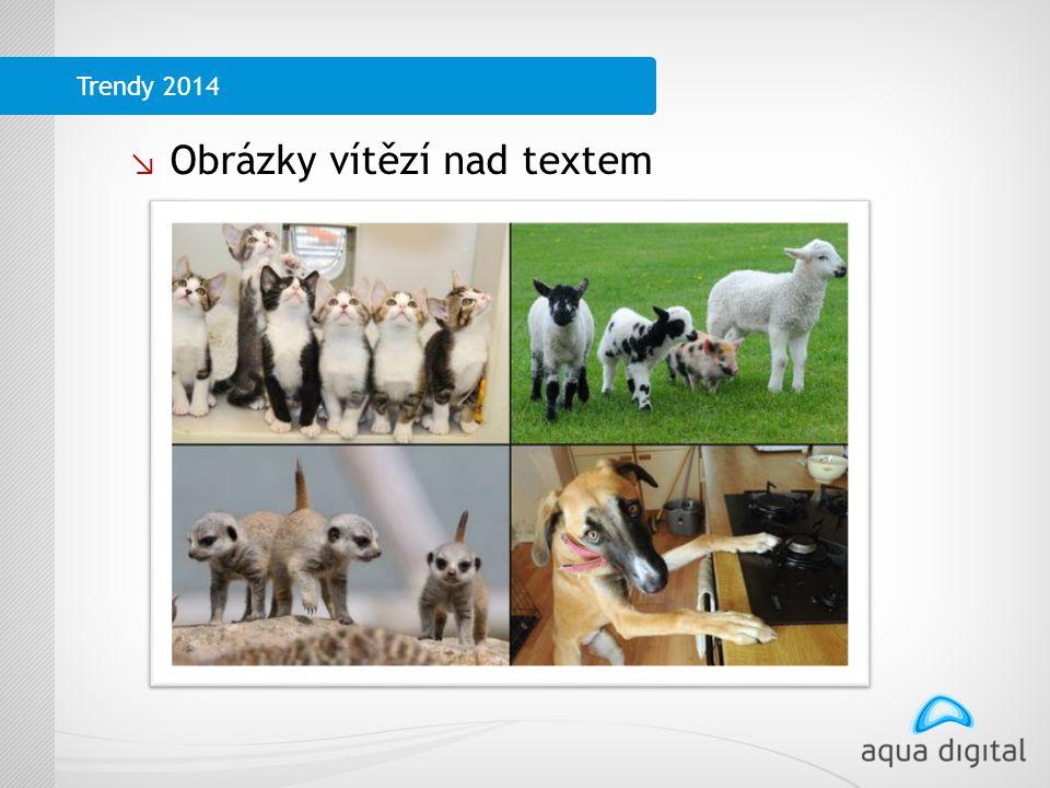 ↘ Obrázky vítězí nad textem Trendy 2014