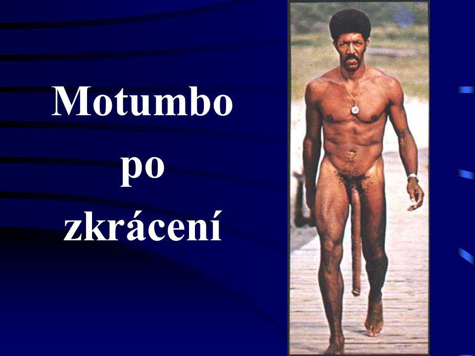 Motumbo po zkrácení