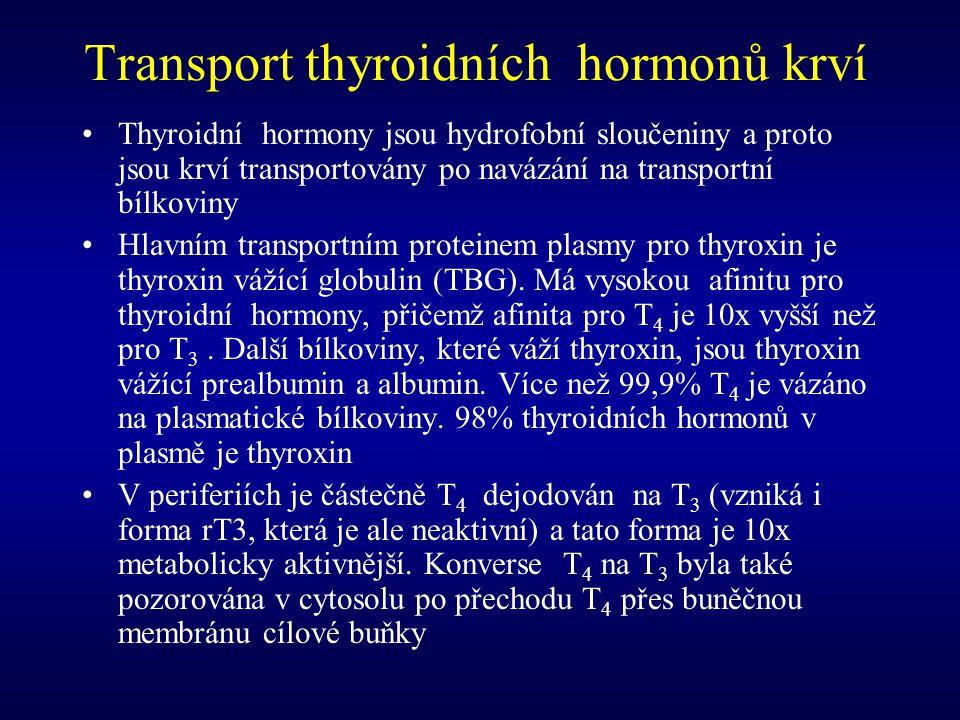Transport thyroidních hormonů krví Thyroidní hormony jsou hydrofobní sloučeniny a proto jsou krví transportovány po navázání na transportní bílkoviny
