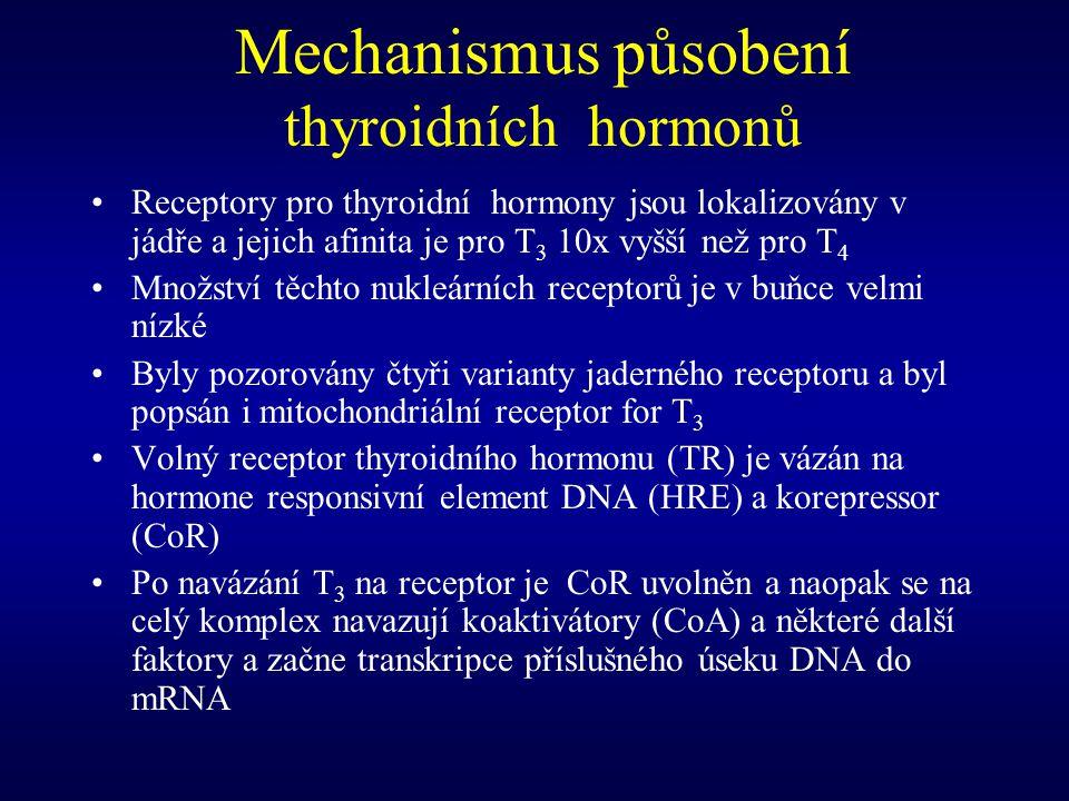 Mechanismus působení thyroidních hormonů Receptory pro thyroidní hormony jsou lokalizovány v jádře a jejich afinita je pro T 3 10x vyšší než pro T 4 M