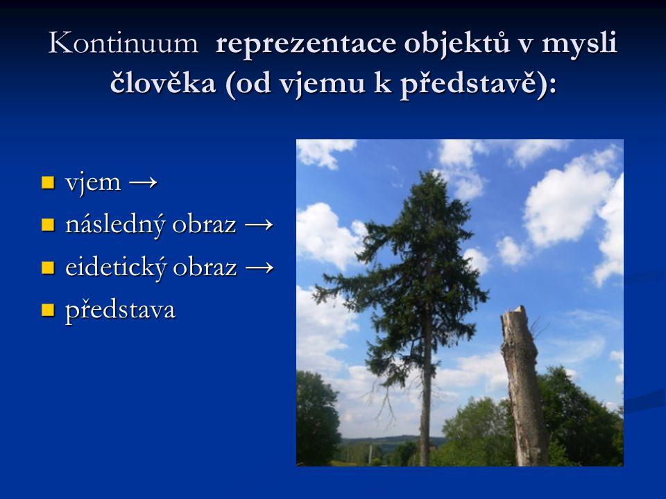 Kontinuum reprezentace objektů v mysli člověka (od vjemu k představě): vjem → vjem → následný obraz → následný obraz → eidetický obraz → eidetický obr