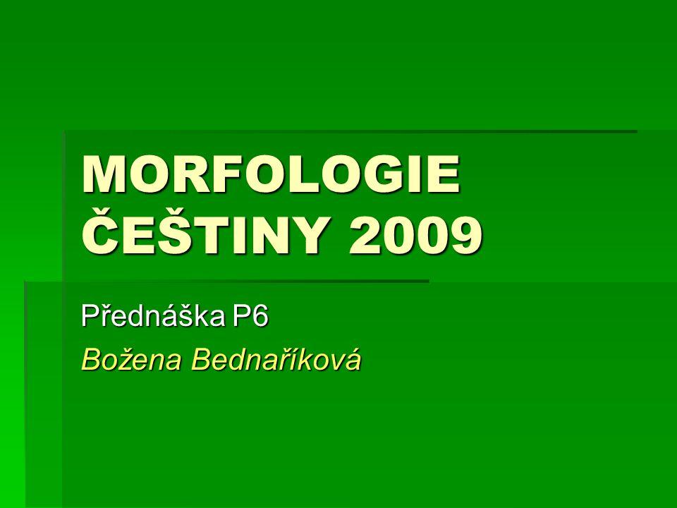 MORFOLOGIE ČEŠTINY 2009 Přednáška P6 Božena Bednaříková