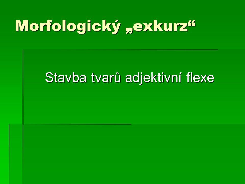 """Morfologický """"exkurz"""" Stavba tvarů adjektivní flexe"""