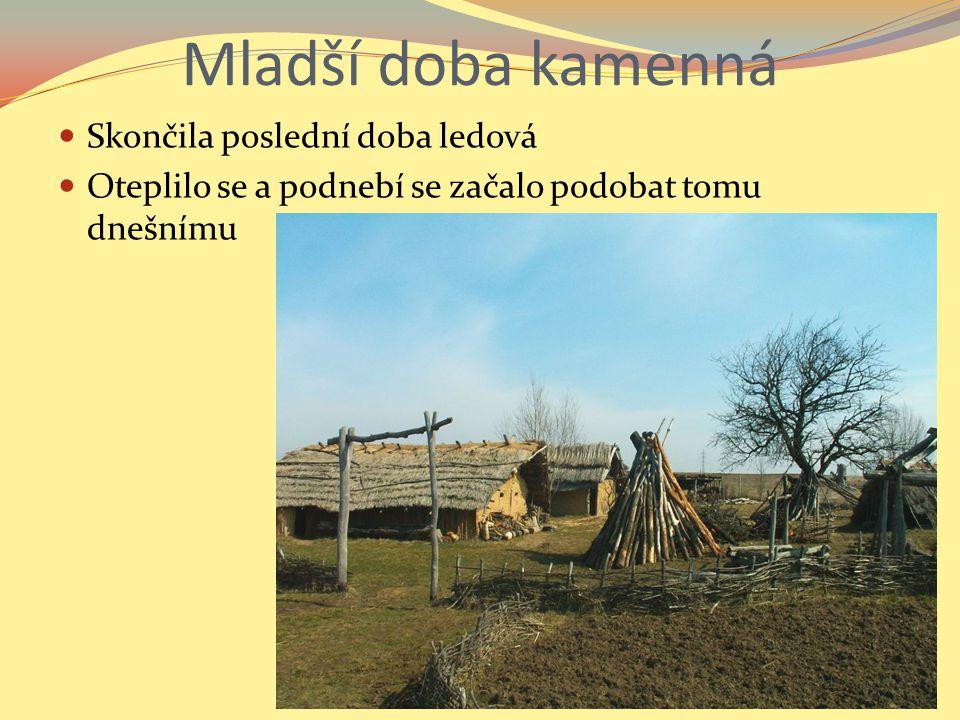 Lidé zjistili, že obilky, některých trav jsou chutné Začali je záměrně vysévat Kácením a vypalováním pralesů získali první pole Nářadí, které pou- žívali bylo vyrobené ze dřeva, nebo z kamene Získanou půdu za- čali obdělávat, seli a sklízeli obilí