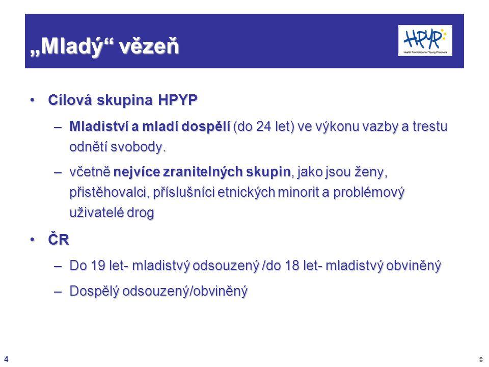 25 © Zdravotní péče v zařízeních pro VV a VTOS Zdravotní péče poskytovaná ve VV a VTOS je podle Butaly et al.