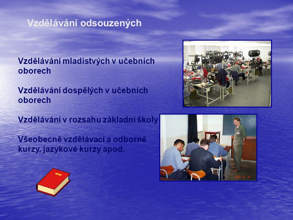 Vzdělávání odsouzených Vzdělávání mladistvých v učebních oborech Vzdělávání dospělých v učebních oborech Vzdělávání v rozsahu základní školy Všeobecně