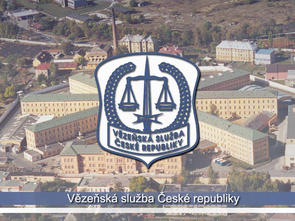 Podnikatelé mimo VS ČR Střediska hospodářské činnosti věznic Vzdělávání denním studiem Vnitřní provozy věznic Způsoby zaměstnávání odsouzených