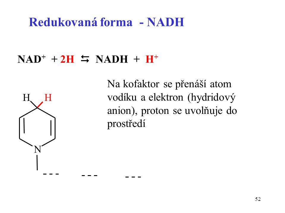 52 NAD + + 2H  NADH + H + Redukovaná forma - NADH N HH Na kofaktor se přenáší atom vodíku a elektron (hydridový anion), proton se uvolňuje do prostře