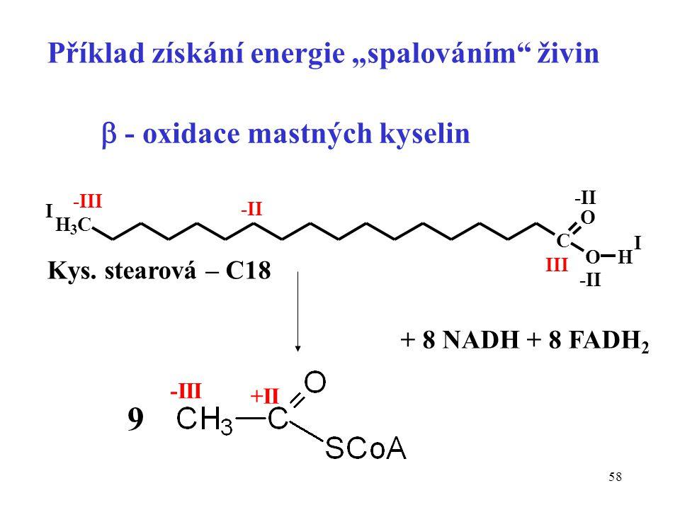 "58  - oxidace mastných kyselin H 3 C C O OH -III -II III -II I I -III +II 9 + 8 NADH + 8 FADH 2 Příklad získání energie ""spalováním"" živin Kys. stear"