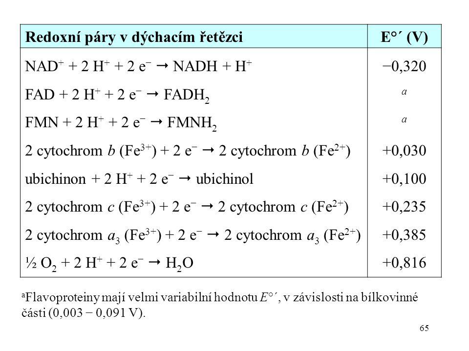 65 Redoxní páry v dýchacím řetězciE°´ (V) NAD + + 2 H + + 2 e −  NADH + H + FAD + 2 H + + 2 e −  FADH 2 FMN + 2 H + + 2 e −  FMNH 2 2 cytochrom b (