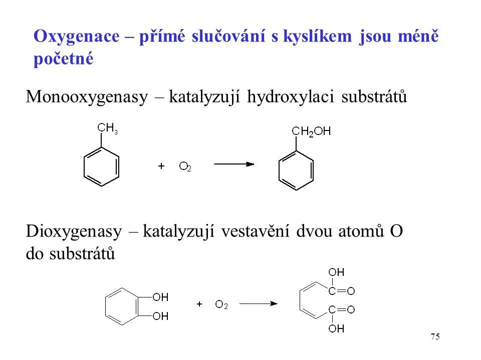 75 Oxygenace – přímé slučování s kyslíkem jsou méně početné Monooxygenasy – katalyzují hydroxylaci substrátů Dioxygenasy – katalyzují vestavění dvou a