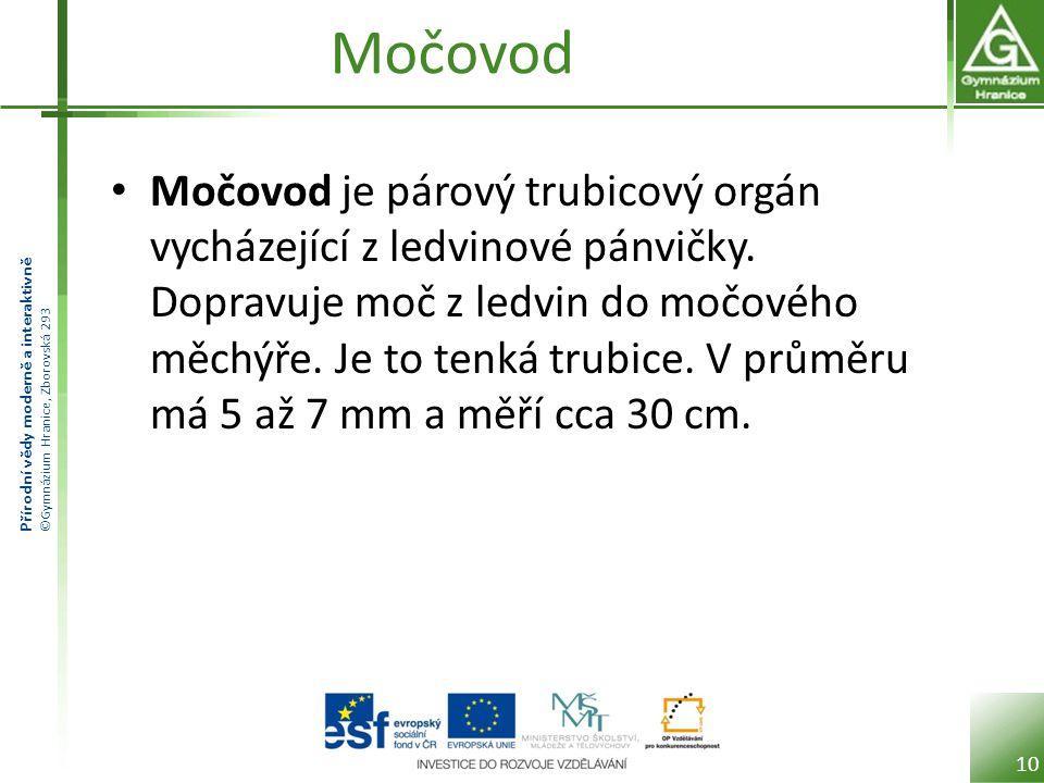 Přírodní vědy moderně a interaktivně ©Gymnázium Hranice, Zborovská 293 Močovod Močovod je párový trubicový orgán vycházející z ledvinové pánvičky. Dop