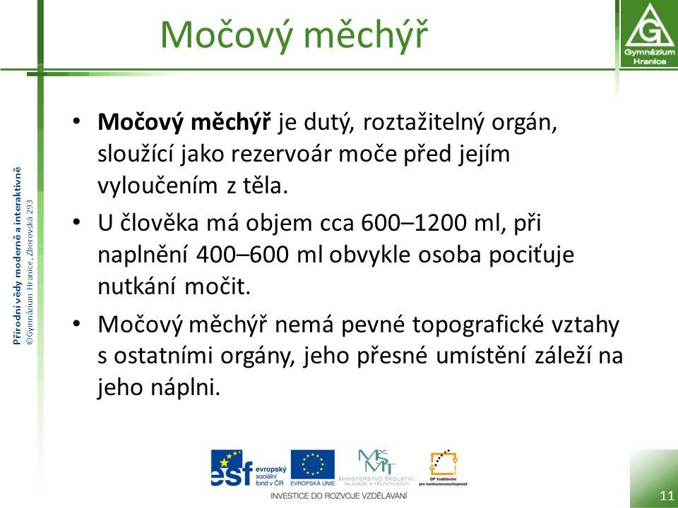Přírodní vědy moderně a interaktivně ©Gymnázium Hranice, Zborovská 293 Močový měchýř Močový měchýř je dutý, roztažitelný orgán, sloužící jako rezervoá