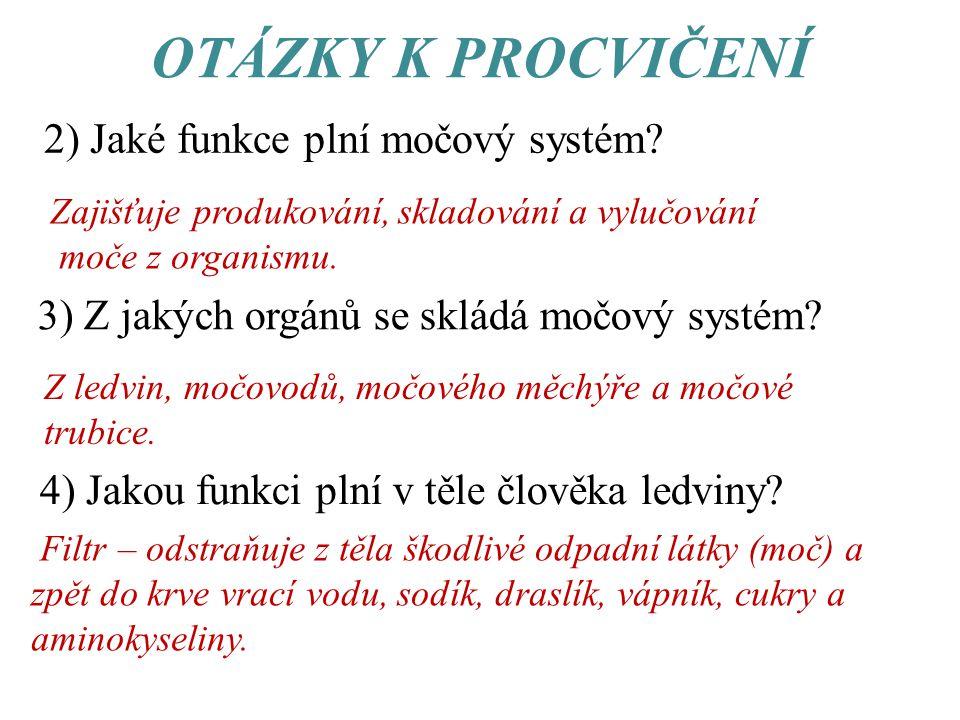 OTÁZKY K PROCVIČENÍ 2) Jaké funkce plní močový systém.