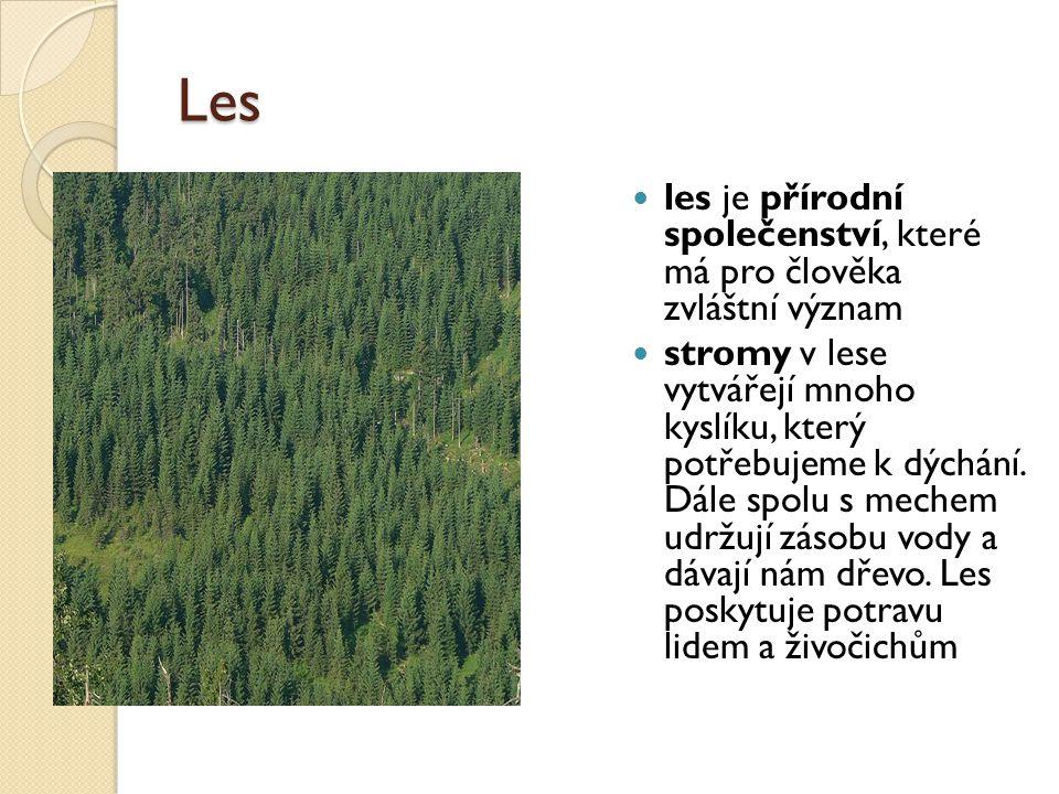 Les les je přírodní společenství, které má pro člověka zvláštní význam stromy v lese vytvářejí mnoho kyslíku, který potřebujeme k dýchání. Dále spolu