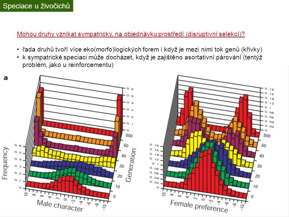 Rozdíly v radiaci a diverzitě různých taxonů radiaci zásadně ovlivňují klimatické a geografické podmínky nejvíc druhů je v tropech a v horách