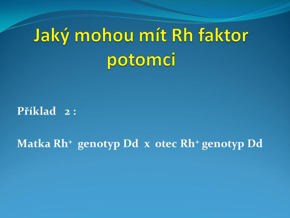 Příklad 2 : Matka Rh + genotyp Dd x otec Rh + genotyp Dd