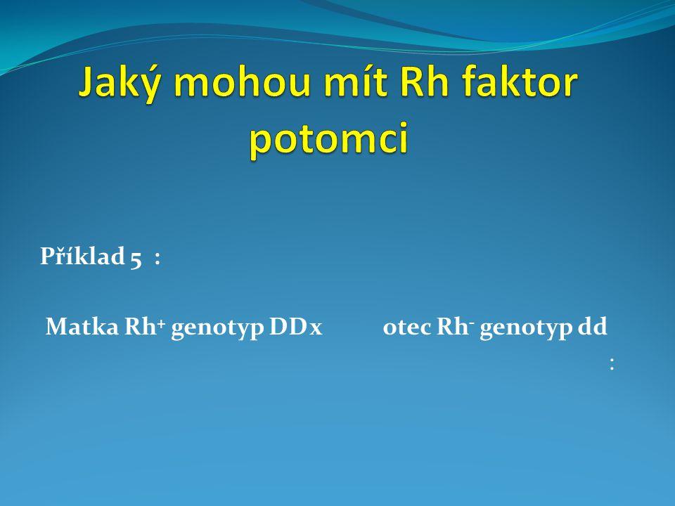 Příklad 5 : Matka Rh + genotyp DDx otec Rh - genotyp dd :