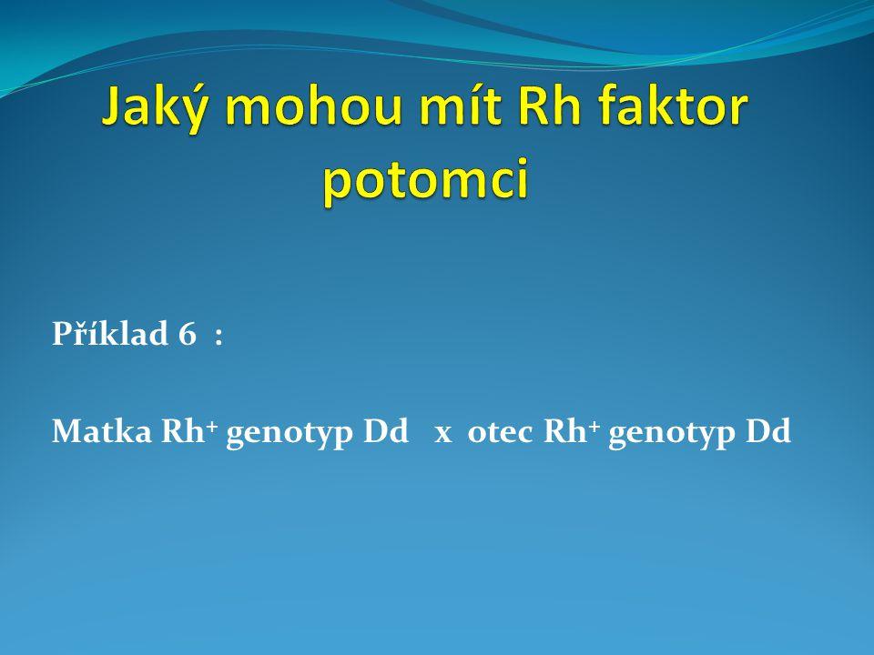 Příklad 6 : Matka Rh + genotyp Dd x otec Rh + genotyp Dd