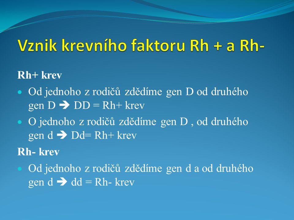 Rh+ krev  Od jednoho z rodičů zdědíme gen D od druhého gen D  DD = Rh+ krev  O jednoho z rodičů zdědíme gen D, od druhého gen d  Dd= Rh+ krev Rh-