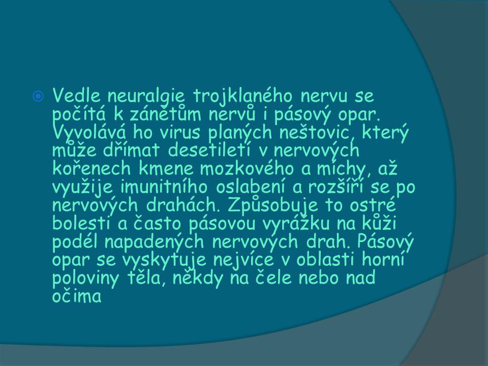  Vedle neuralgie trojklaného nervu se počítá k zánětům nervů i pásový opar. Vyvolává ho virus planých neštovic, který může dřímat desetiletí v nervov