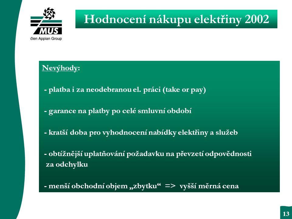 BEZPODMÍNEČNÝ RESPEKT 13 Hodnocení nákupu elektřiny 2002 Nevýhody: - platba i za neodebranou el.