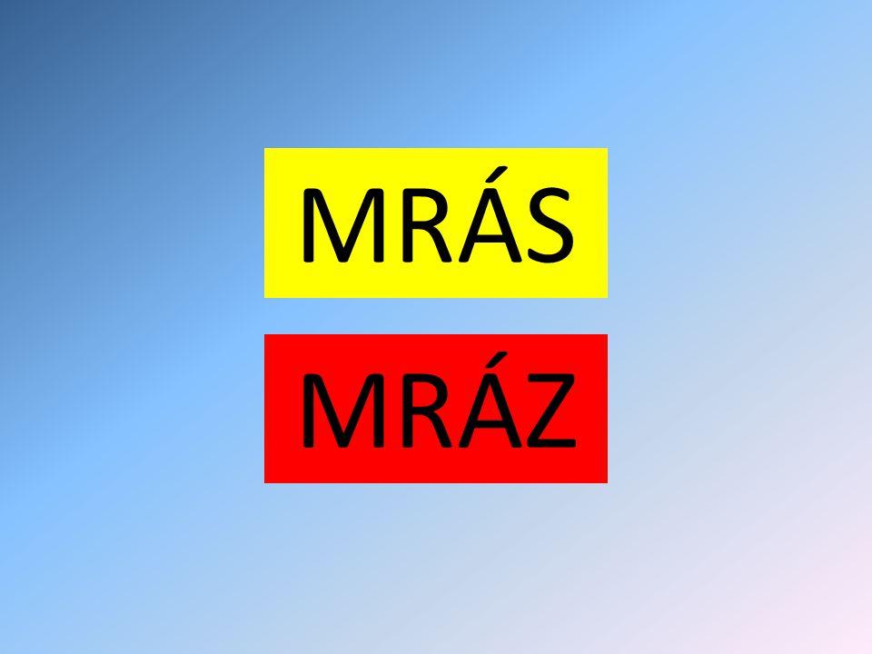 NE! MRAZY