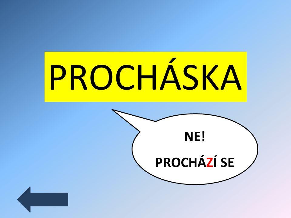 PROCHÁZKA ANO!
