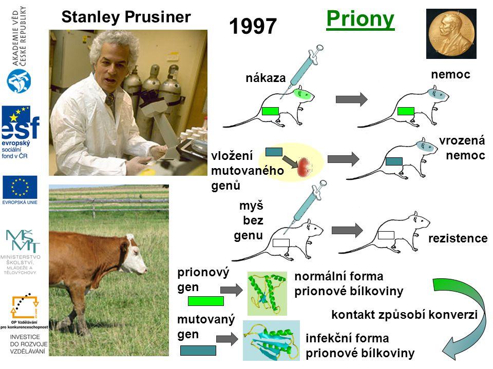 vložení mutovaného genů 1997 Stanley Prusiner Priony infekční forma prionové bílkoviny normální forma prionové bílkoviny prionový gen mutovaný gen kontakt způsobí konverzi myš bez genu rezistence vrozená nemoc nákaza nemoc