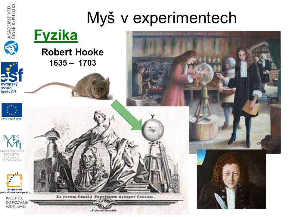 Robert Hooke 1635 – 1703 Myš v experimentech Fyzika