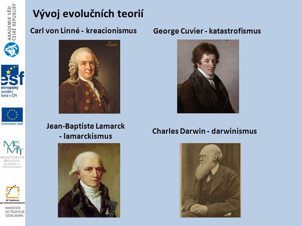 Vývoj evolučních teorií Carl von Linné - kreacionismus George Cuvier - katastrofismus Jean-Baptiste Lamarck - lamarckismus Charles Darwin - darwinismus