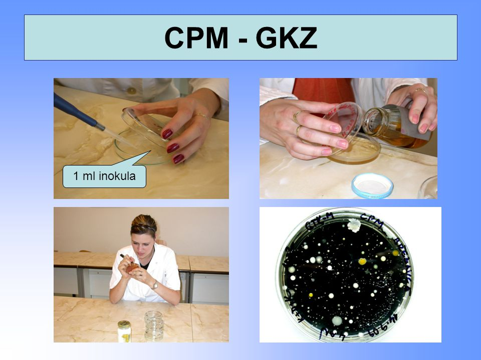 CPM - GKZ 1 ml inokula