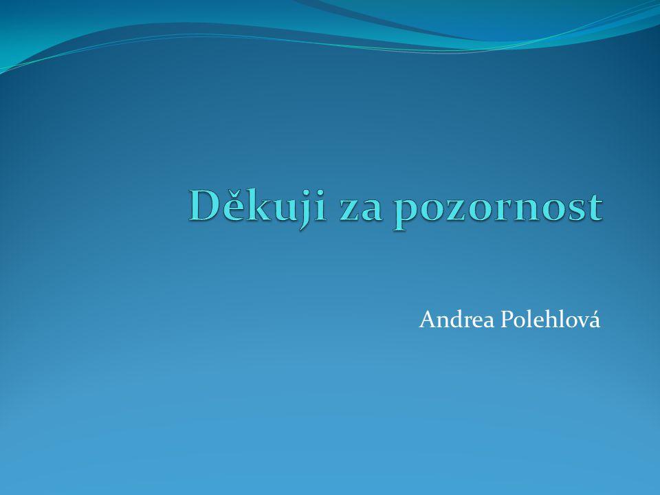 Andrea Polehlová