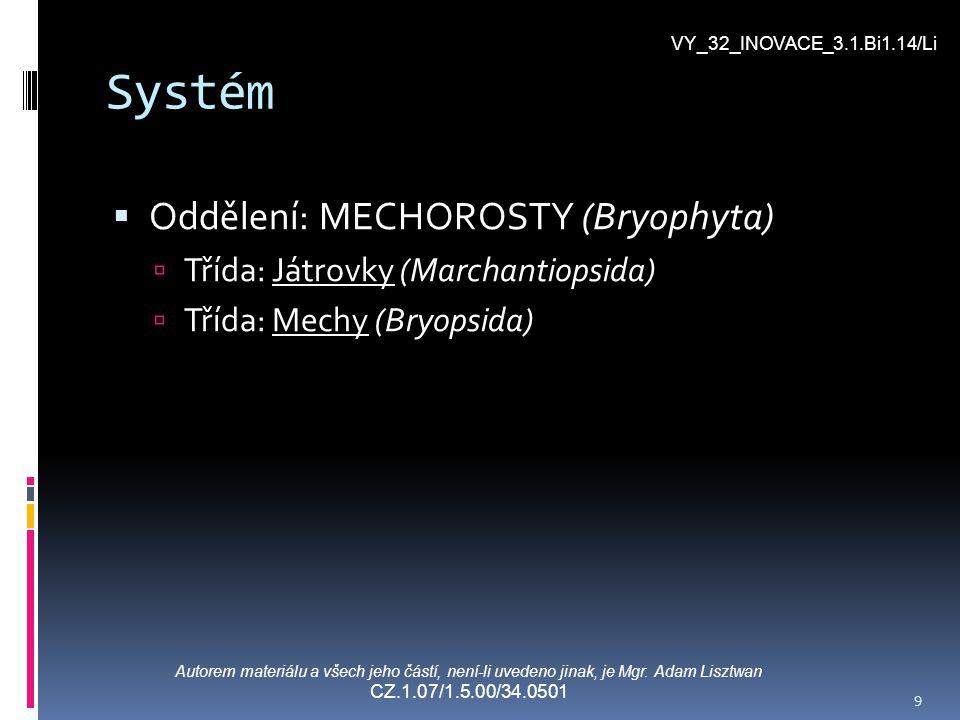 Systém  Oddělení: MECHOROSTY (Bryophyta)  Třída: Játrovky (Marchantiopsida)  Třída: Mechy (Bryopsida) Autorem materiálu a všech jeho částí, není-li uvedeno jinak, je Mgr.