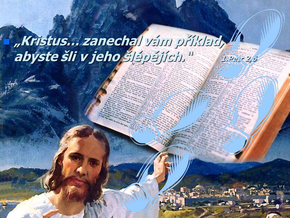 """n """"Proč mne oslovujete 'Pane, Pane', a nečiníte, co říkám?"""" Lukáš 6,46"""