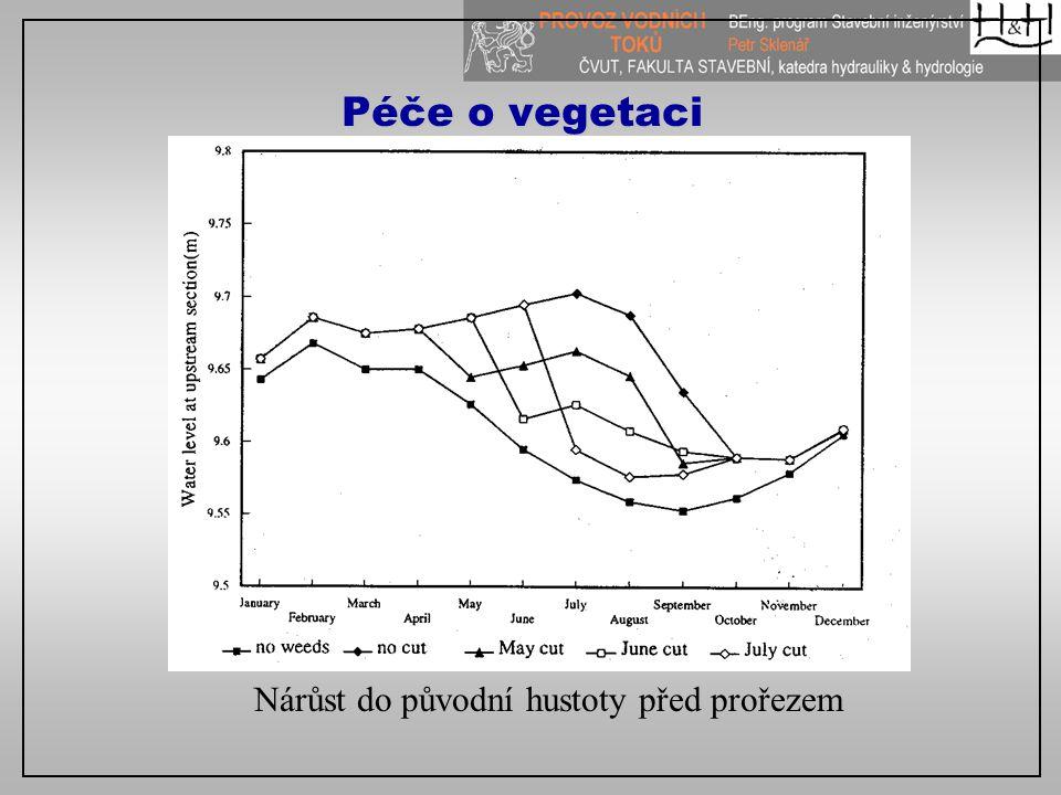Péče o vegetaci Nárůst do původní hustoty před prořezem