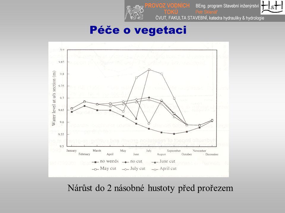 Péče o vegetaci Nárůst do 2 násobné hustoty před prořezem
