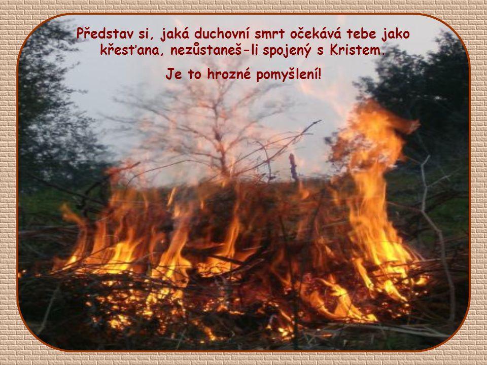 Představ si větev odlomenou od kmene Nemá budoucnost, nemá žádnou šanci, neponese plody, uschne a bude spálena.