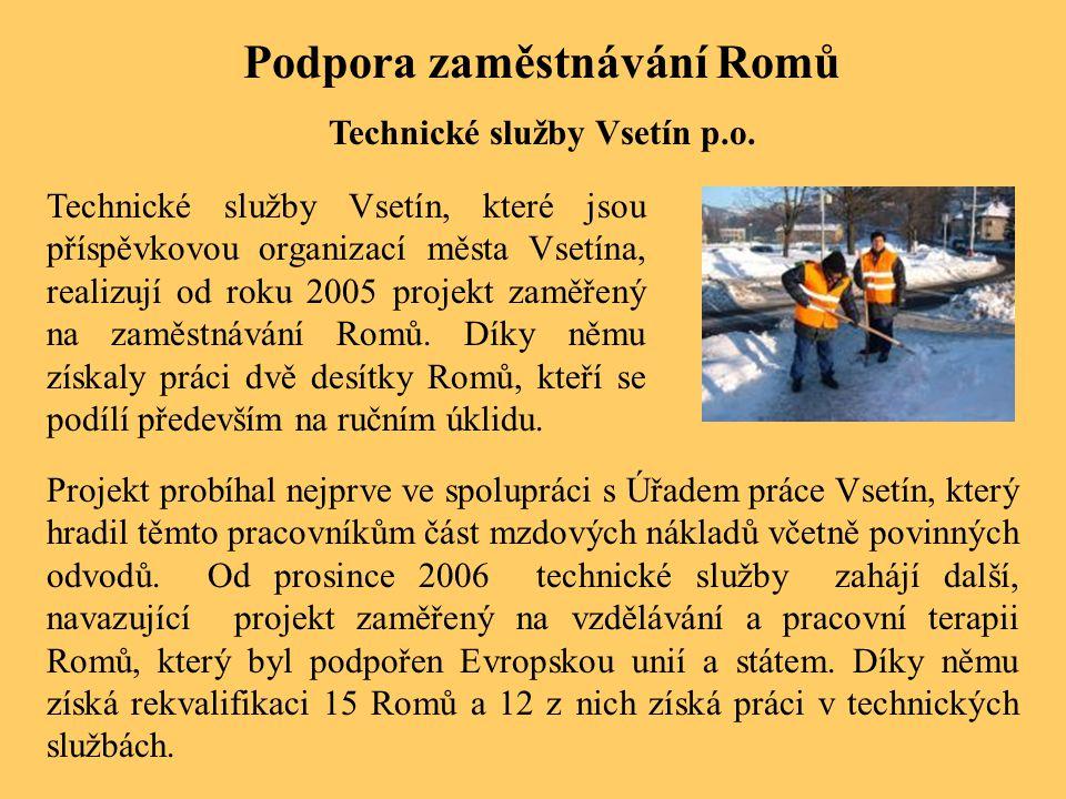 Podpora zaměstnávání Romů Technické služby Vsetín p.o. Technické služby Vsetín, které jsou příspěvkovou organizací města Vsetína, realizují od roku 20