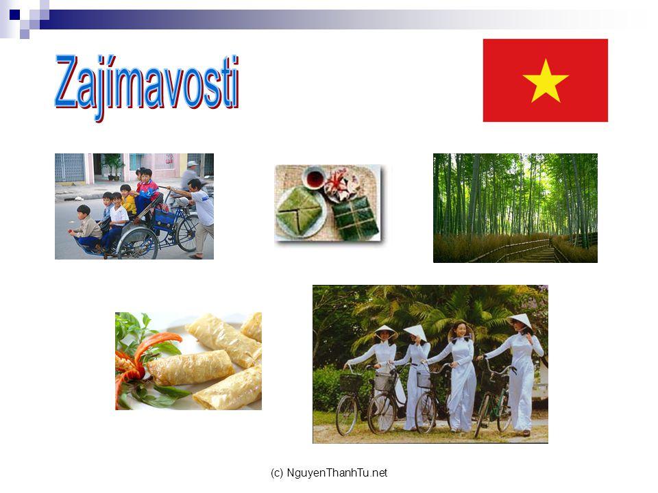 (c) NguyenThanhTu.net