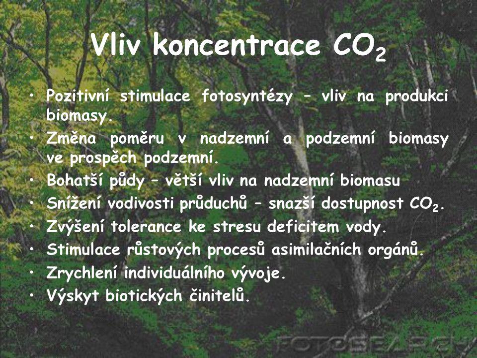Vliv koncentrace CO 2 Pozitivní stimulace fotosyntézy – vliv na produkci biomasy. Změna poměru v nadzemní a podzemní biomasy ve prospěch podzemní. Boh