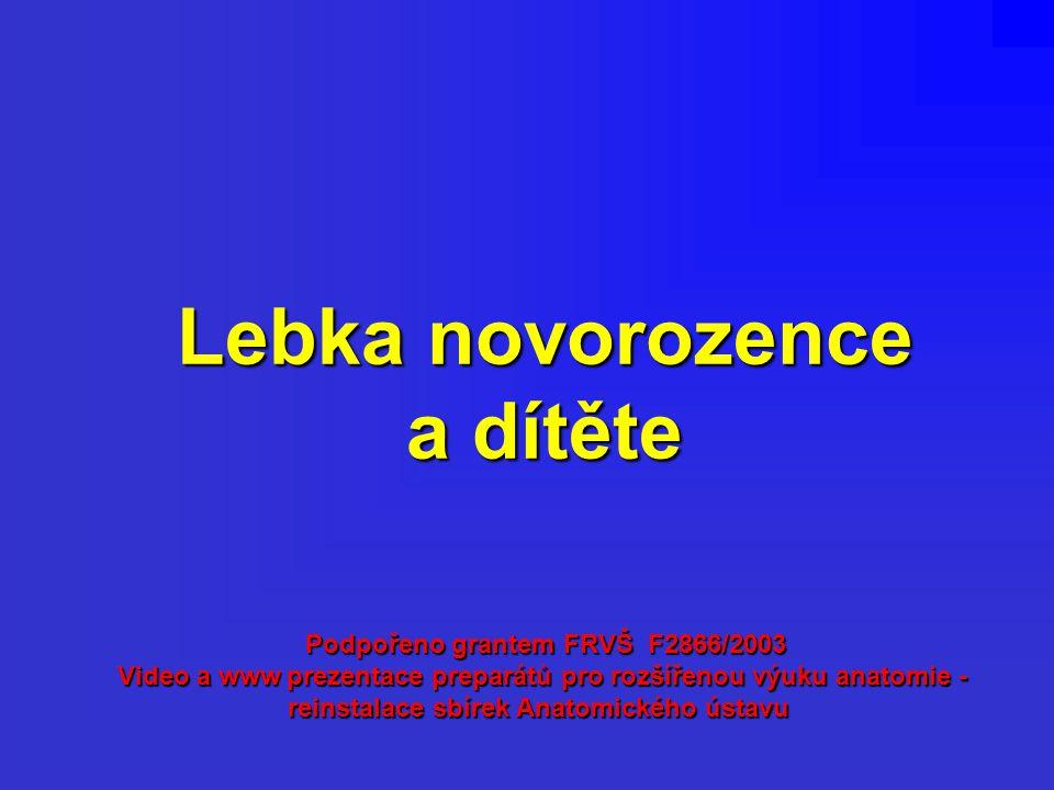 Lebka novorozence a dítěte Podpořeno grantem FRVŠ F2866/2003 Video a www prezentace preparátů pro rozšířenou výuku anatomie - reinstalace sbírek Anato